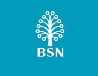 BSN to complete move to ICBS